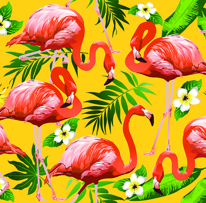 Bali love flamingo scuba diving fish women under water fashion eco-love